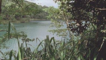 view of Lake Eacham through pandanas plants