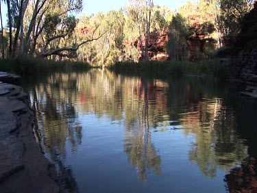 Calm pool in the Australian Outback