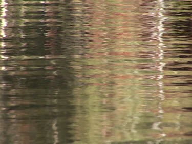 Ripples in a pool of water with reflections of red white and green