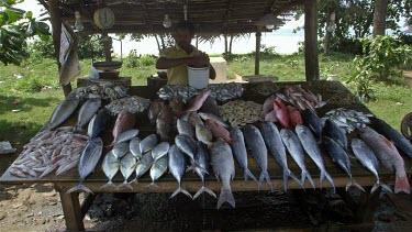 Keeping Fresh Fish Wet On Street Stall, Weligama, Sri Lanka, Asia