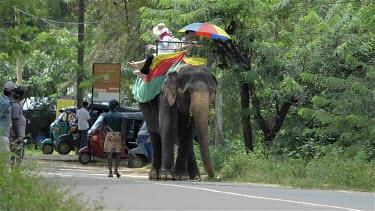 Elephant Ride & Tuc Tuc, Sigiriya, Sri Lanka