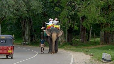 Elephant Ride & Red Tuc Tuc, Sigiriya, Sri Lanka