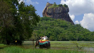 Lion Rock & Elephant Ride In Lake, Sigiriya, Sri Lanka